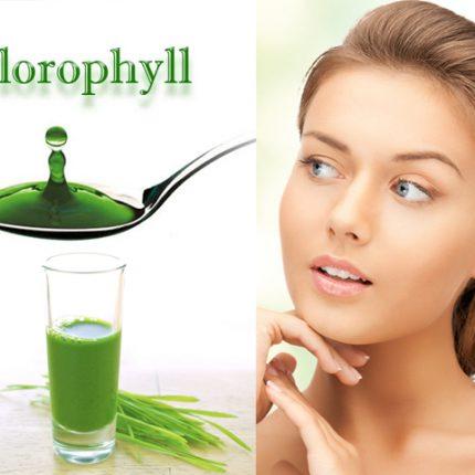Manfaat klorofil untuk kecantikan