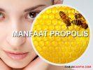 Manfaat Propolis Untuk Kecantikan